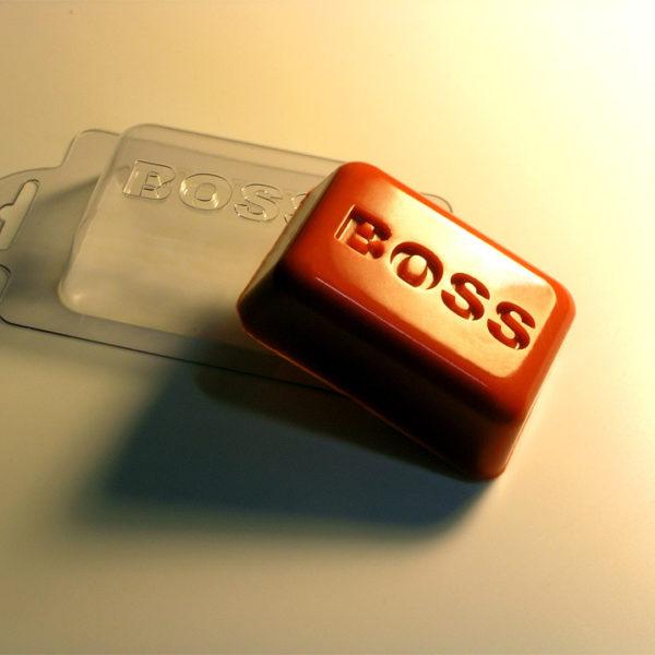 Пластиковая форма Босс