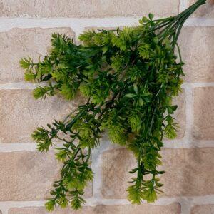 Ивес зеленый