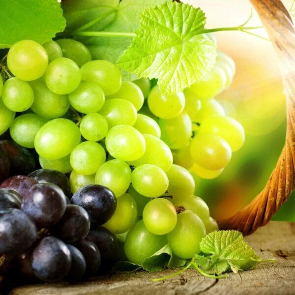 Отдушка Виноград эконом
