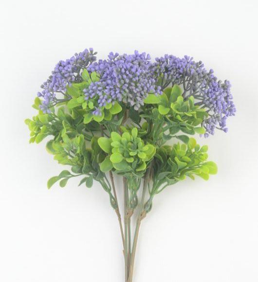 Куст Ламот фиолетовый