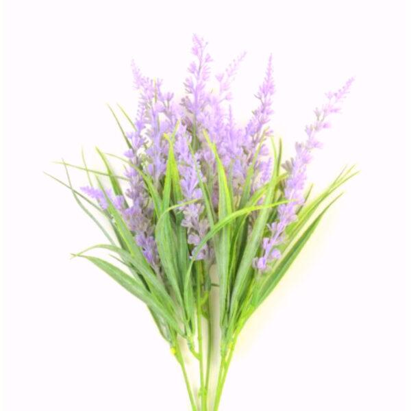 Куст Лаванда Анджен (фиолет.)